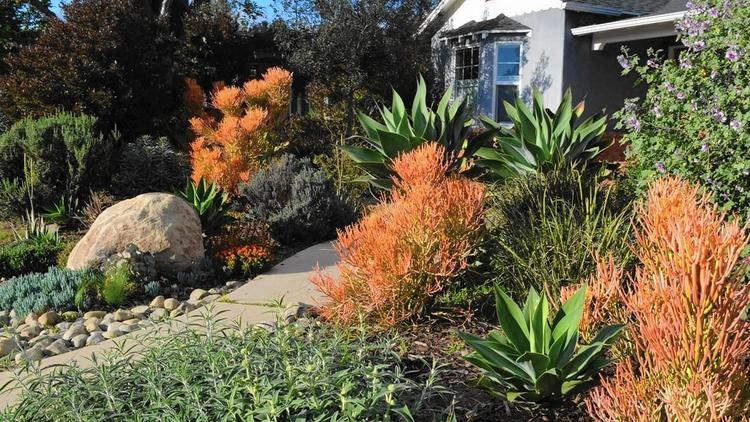 The Mar Vista Green Garden Showcase happens this weekend, featuring water wise gardens like this one and 49 other sustainable examples. Photo: Mar Vista Community Council