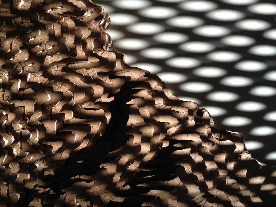 Shadows on a topography study model. Photograph by Yiran Wang