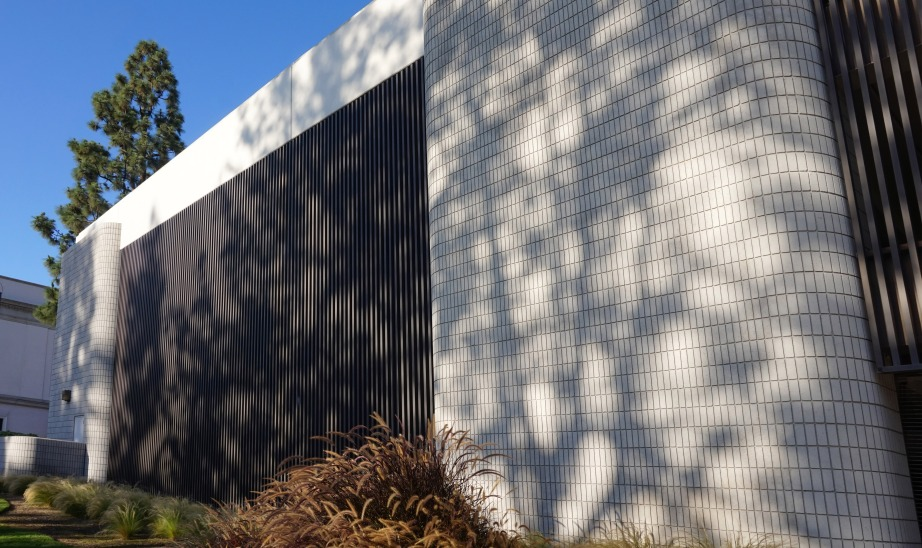 Tree shadows cast onto a Pasadena, CA parking structure wall add texture. Photograph by Yiran Wang)