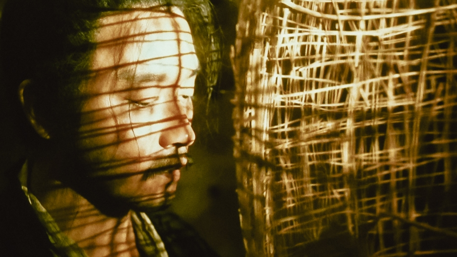 Image: The spinning shadow of a big bird cage cast on a man's face adds into the total atmosphere.  Ashes of Time (1994), director, Kar Wai Wong