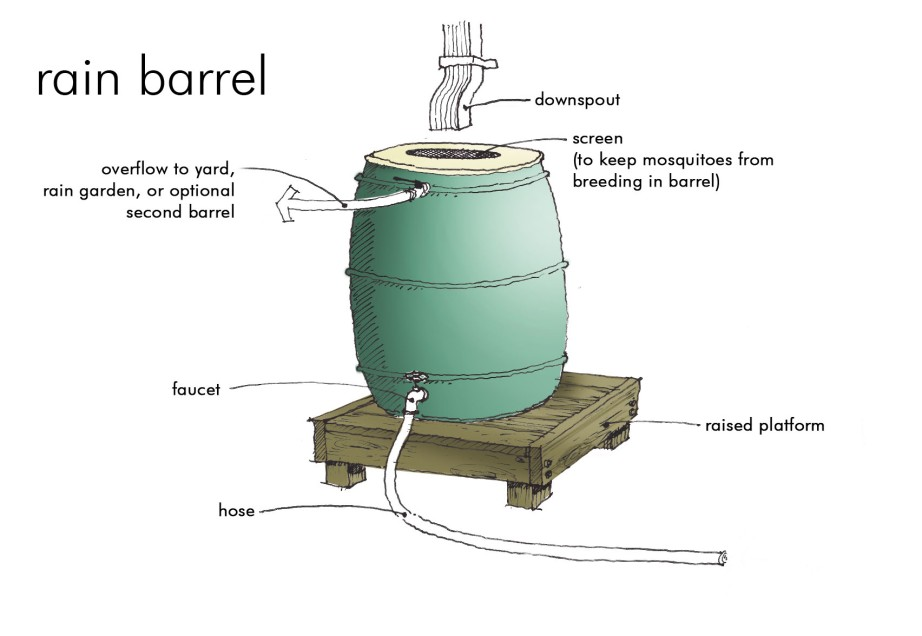 Rain barrel diagram related keywords rain barrel diagram for First flush diverter plans