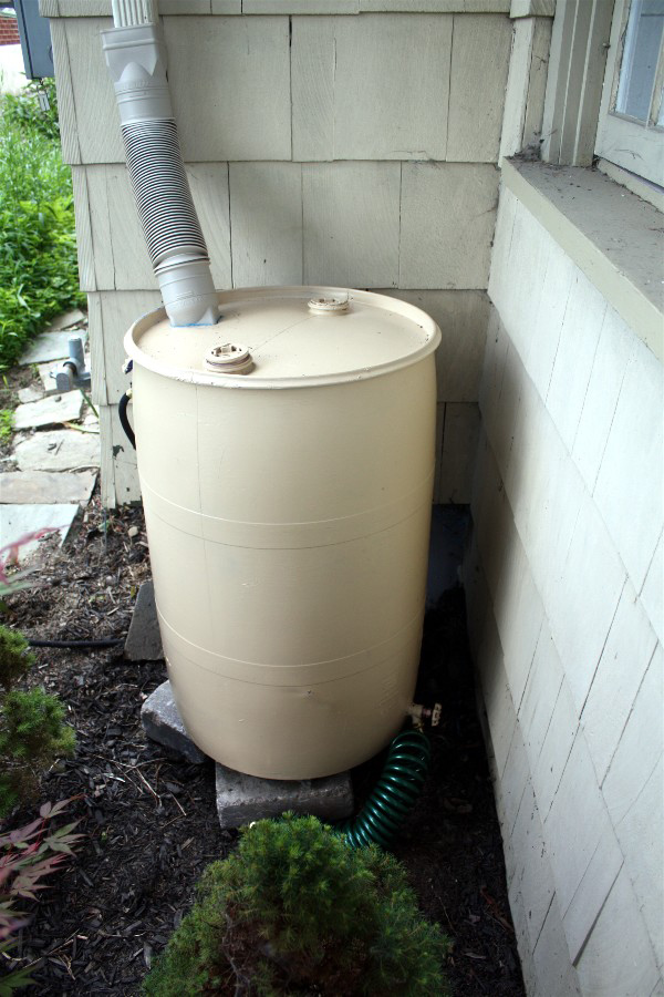 Gardening With Soul's DIY rain barrel project.