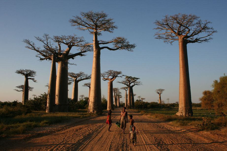 Local people on the Avenue of the Baobabs, Morondava, Madagascar / Creative Commons Photo by Gavinevans.