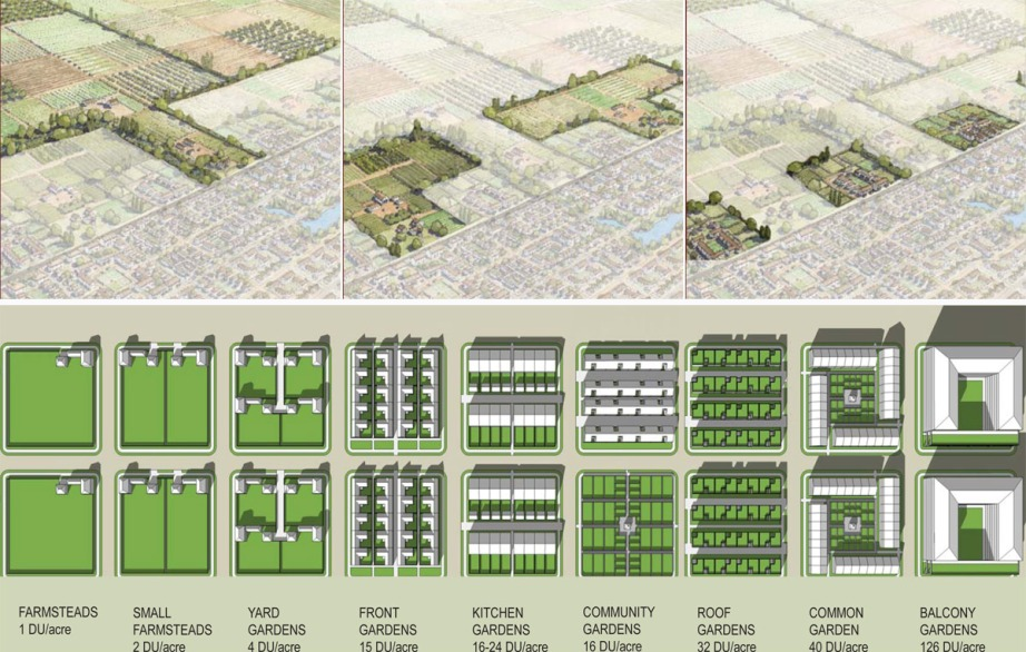 "Illustrations by DPZ demonstrating how varying intensities of agriculture can ""plug in"" to the edge of a community (top).  Building types demonstrating possible achieve-able densities on one-acre blocks throughout the community (bottom)."