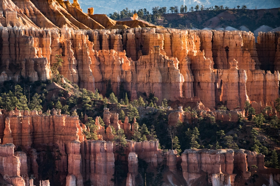 Bryce National Park-3