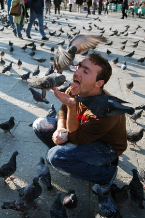 VENICE, IT. October 17, 2007 - Giuseppe Tonini, a daring tourist, has a different take on feeding pigeons in St. Mark's Square in Venice, Italy.
