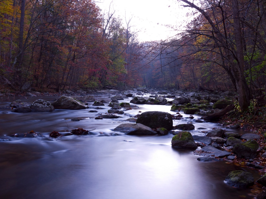 Raritan River at the Ken Lockwood Gorge Wildlife Management Area. Photo by Keith Survell.
