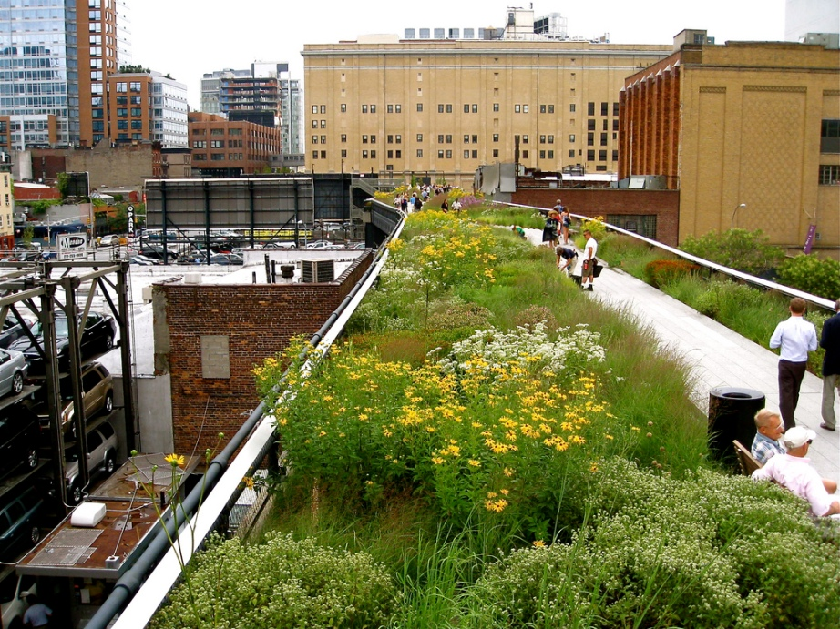 The High Line Elevated Park in New York. Photo by StaceyJean