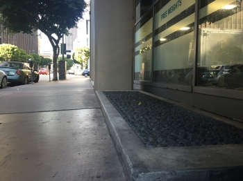 A mortared cobble bed in front a gym in Downtown Los Angeles along 6th street designed to deter homeless from sleeping in front of the entry. Photo by Yiran Wang.