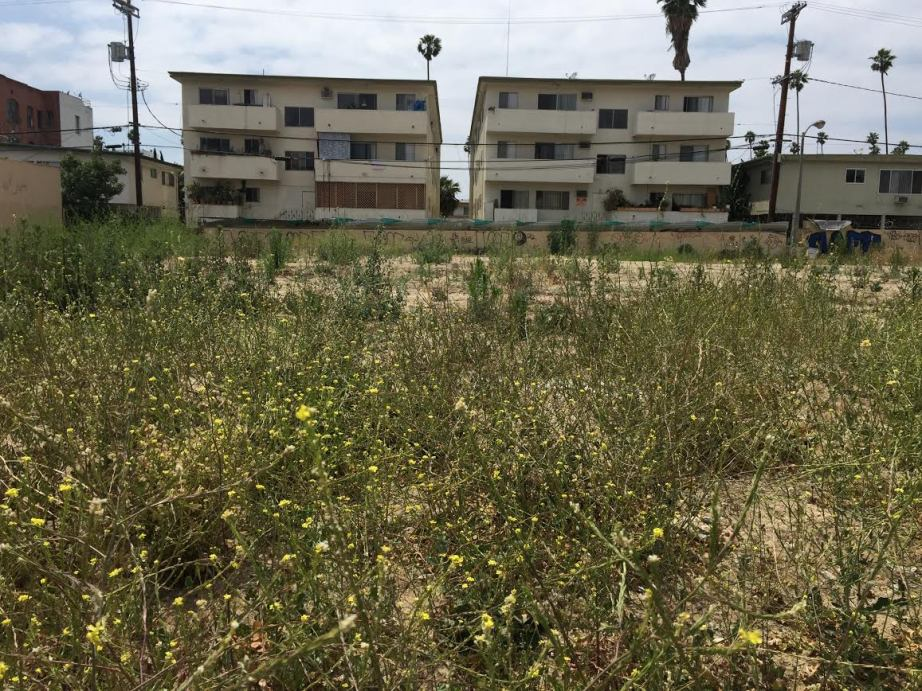 Vacant Lot, Koreatown, Los Angeles, CA_2