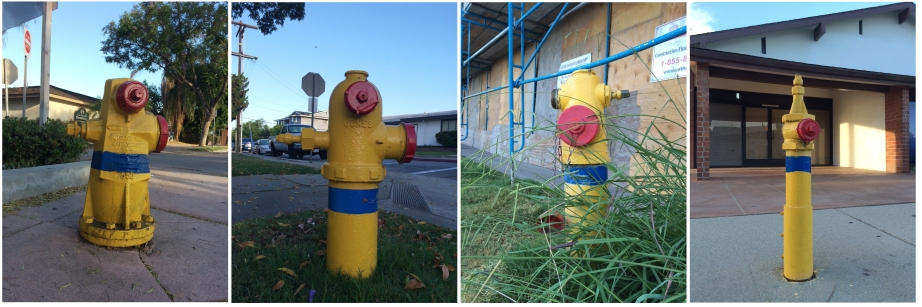 Different Shapes of Fire Hydrants in San Gabriel. Photos by Chuan Ding.