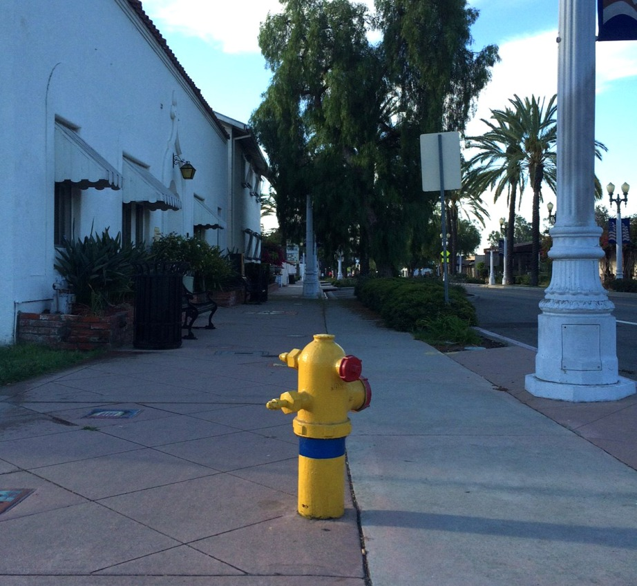 A fire hydrant in San Gabriel. Photo by Chuan Ding.