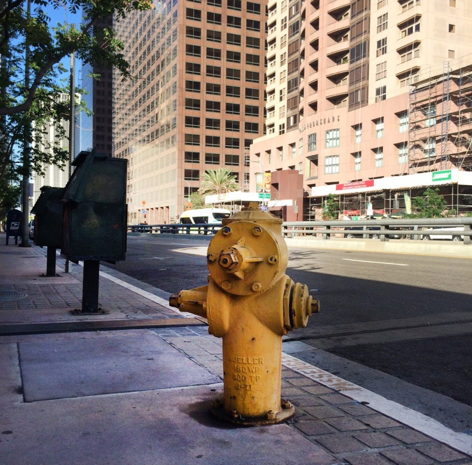 A fire hydrant in Downtown LA. Photo by Chuan Ding.