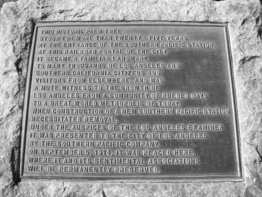 "Plaque commemorating the Arcade Depot Palm as the ""Mute witness to the growth of Los Angeles"". Both plaque and Arcade Palm are situated in front of the LA Memorial Coliseum."