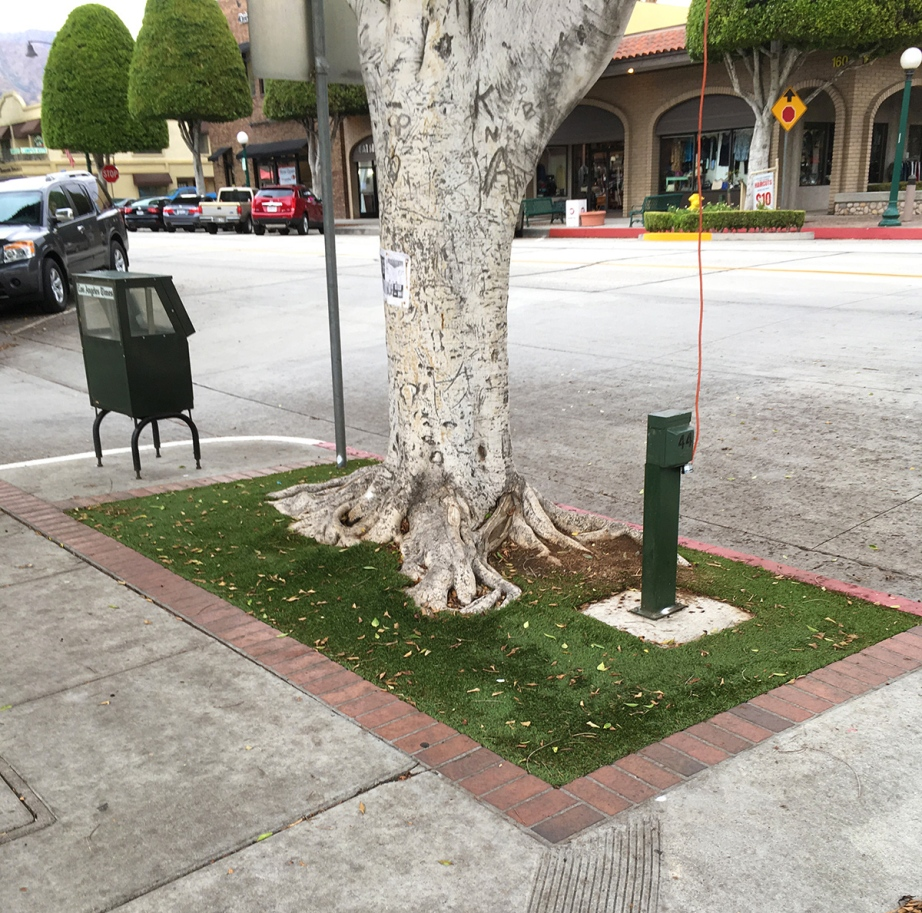 Expanded tree well on Glendora Avenue in Glendora covered with Astroturf. Photo by Kathy Rudnyk.
