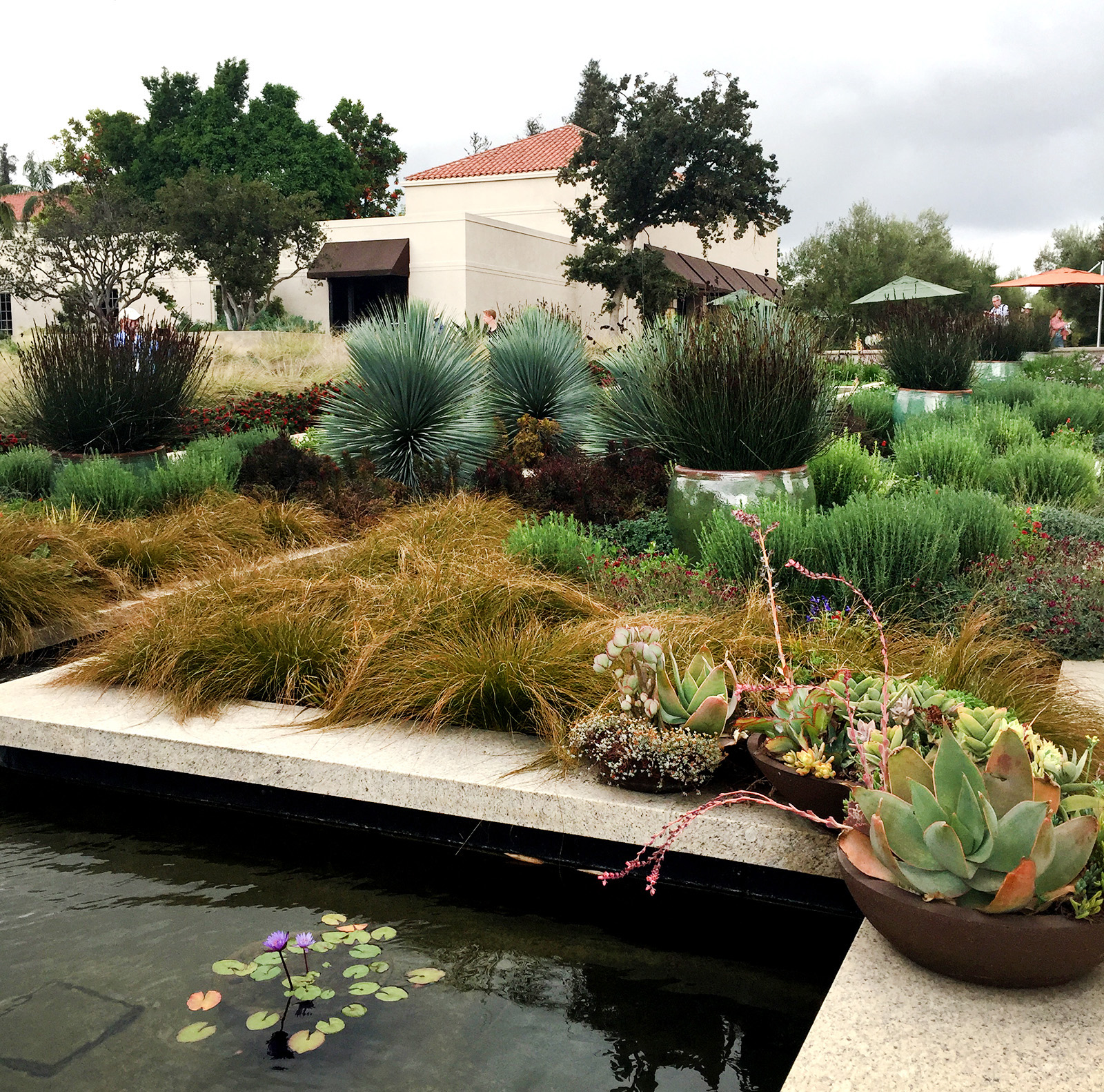 I Recently Enjoyed A Fabulous Day At The Huntington Library, Art  Collections And Botanical Gardens U2013 A Day Spent As Part Of The Annual ASLA  National ...